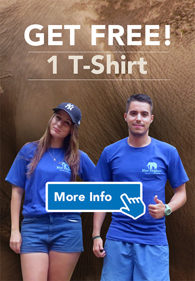 T-shirt Blue Elephant Thailand Tours